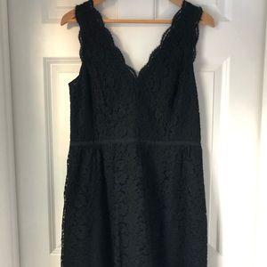 The LOFT black lace dress Size 8